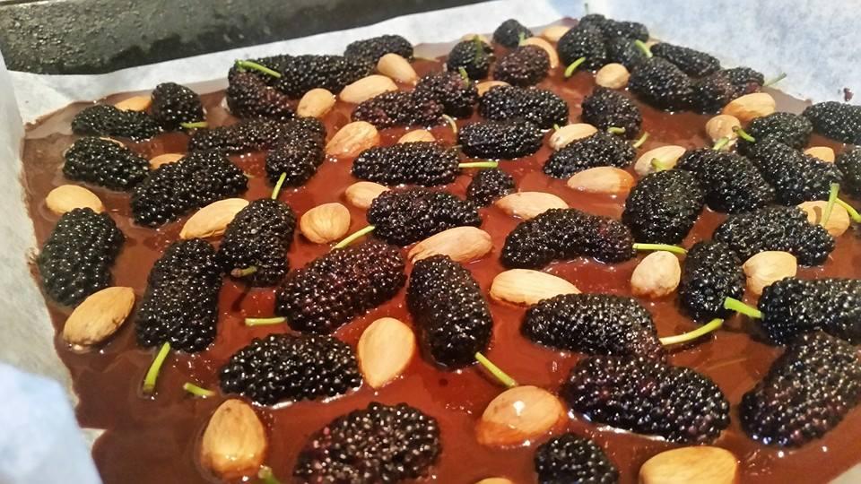 Mulberry chocolate bark
