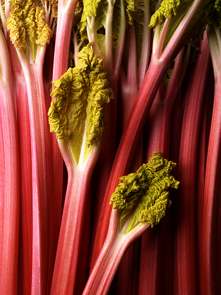 Rhubarb 3.jpg