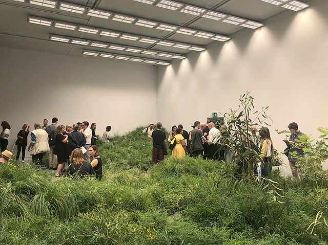 'Repair' is now open at the Australian Pavilion. Tonsley is on display amongst the native grasslands and a selection of Australian projects that approach repair of our country's environment. Repair is curated by Mauro Baracco + Louise Wright of Baracco+Wright Architects, with artist Linda Tegg. #repairvenice2018 #venicebiennale #australianpavilion #repair #tonsleyinnovationdistrict #renewalsa #venicearchitecturebiennale2018