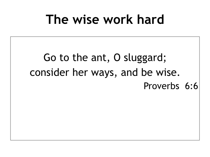 Living wisely in a foolish world - lessons from Proverbs.002.jpeg