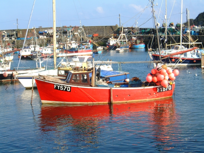 boat-in-harbour 800x600.jpg