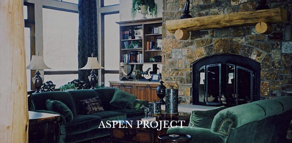 Aspen-Project.jpg