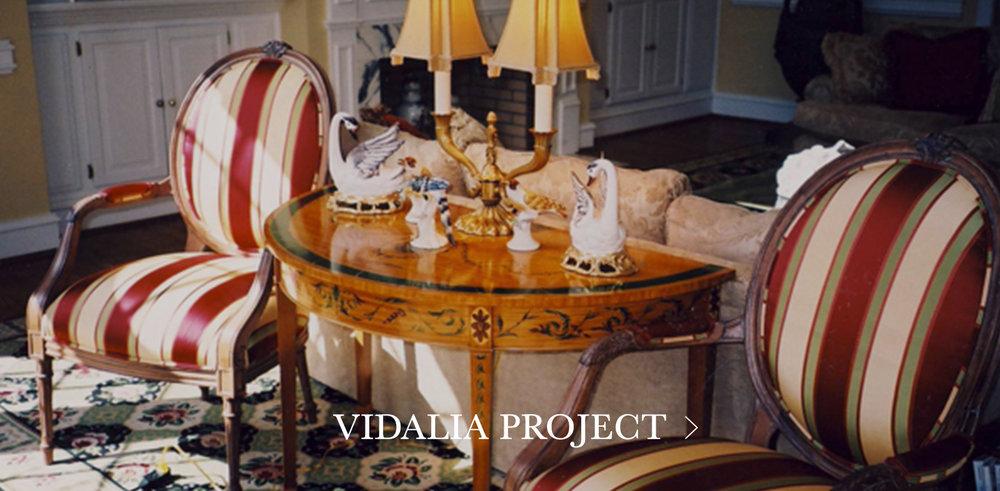 Vidalia-Project.jpg