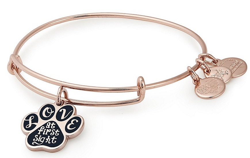 Alex and Ani - Love At First Sight Bangle Bracelet