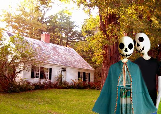 vermont home livings 2 livings.jpg