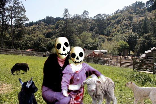 petting zoo4livings.jpg