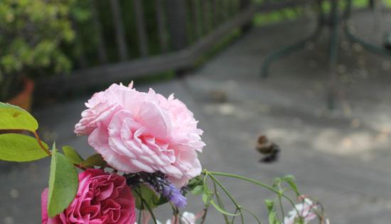 flowers4livings.jpg