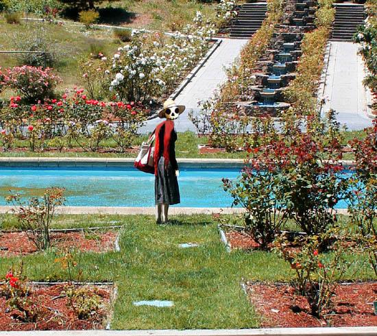 rose garden7LIVINGS2.jpg