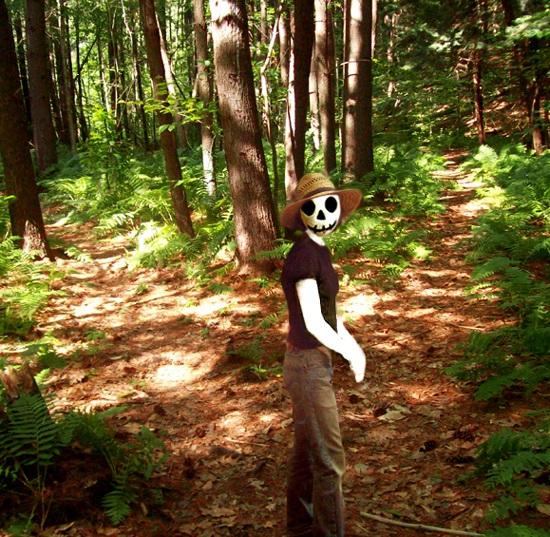 vermont woods35.jpg