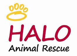 Halo Rescue