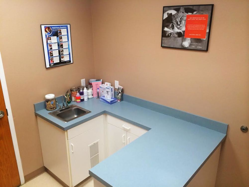 All Valley Pet Clinic Emerald