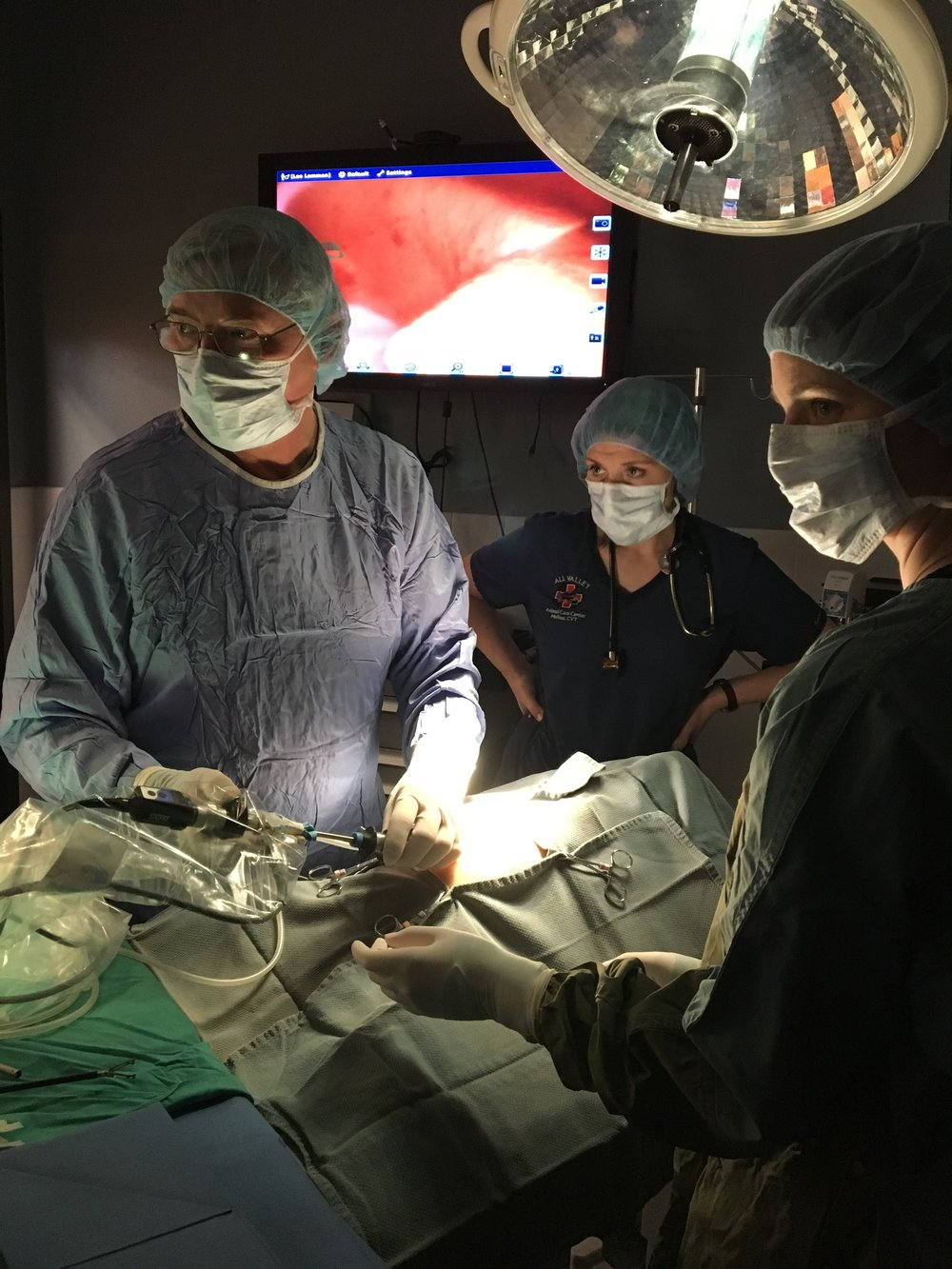 Dr. Dale Lake performing a laparoscopic liver biopsy.