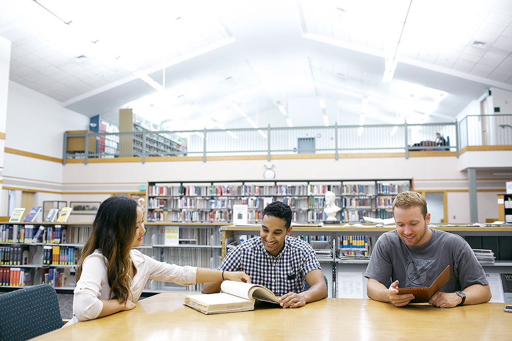 Students study on campus in the library.
