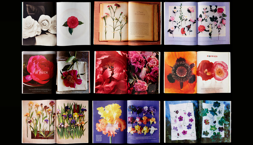 Glossary of Flower Stories