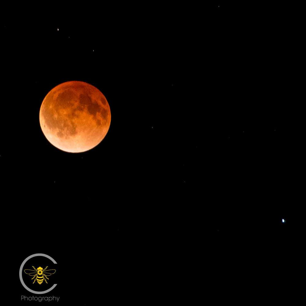 The Blood Moon over Urbandale around 2:00 this morning.