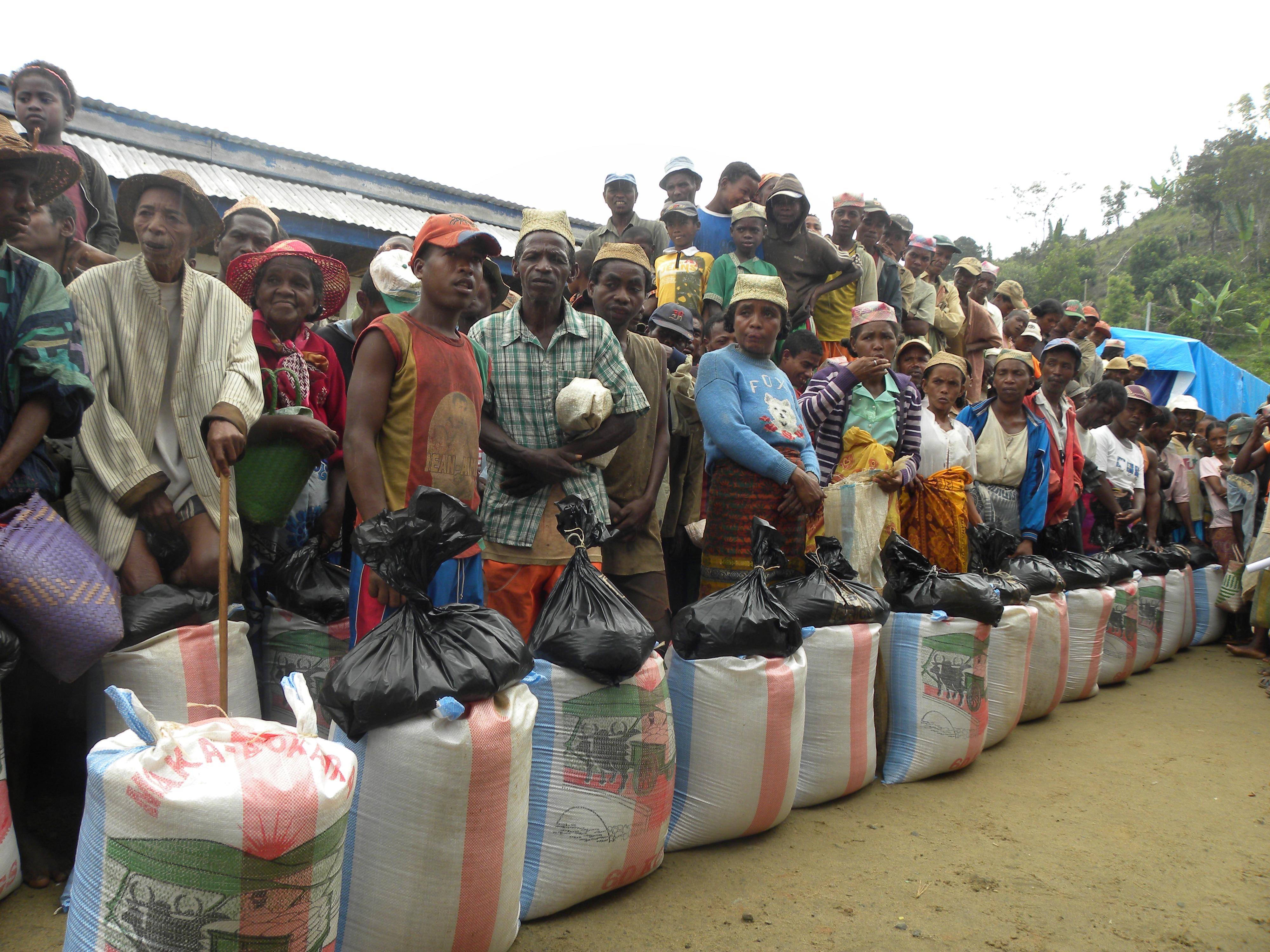 Cyclone Row of rice.jpg