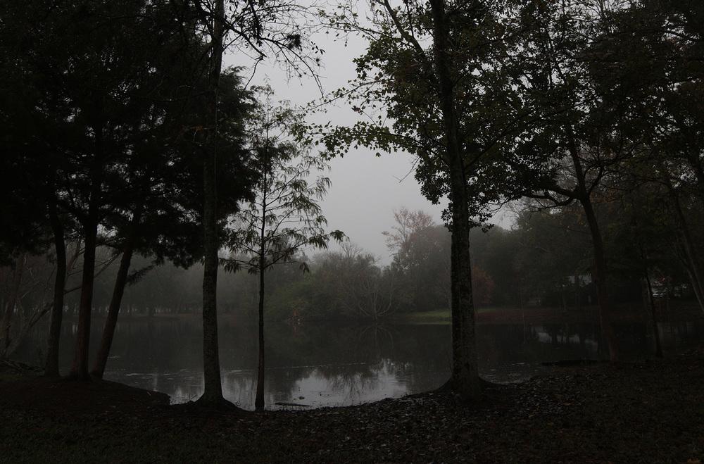 Fog Pond - 002/365
