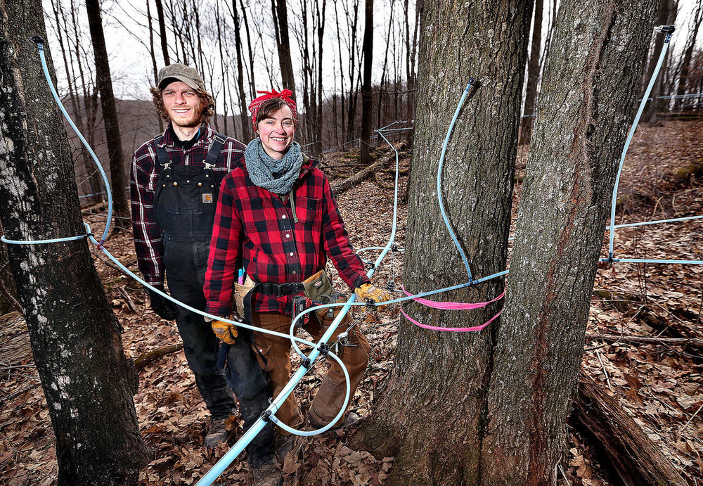 La Crosse Tribune - March 5, 2017  STEVE CAHALAN  CASHTON — The maple sap began flowing early this year at the expanding B&E's Trees farm south of Cashton, where owners Bree Breckel and Eric Weninger have put up a building with their own evaporator inside to boil the sap to create syrup. Once they've made their certified organic maple syrup, it will be aged for a year in charred oak bourbon barrels at the Food Enterprise Center in Viroqua, to give it a unique flavor. --->