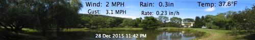 WeatherCatBanner.jpg