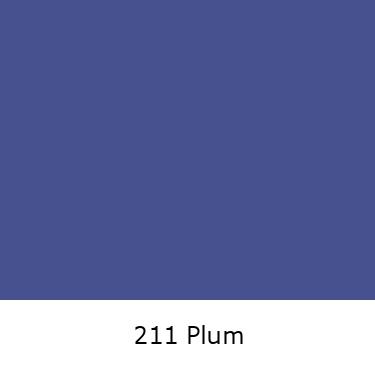 211 Plum.jpg