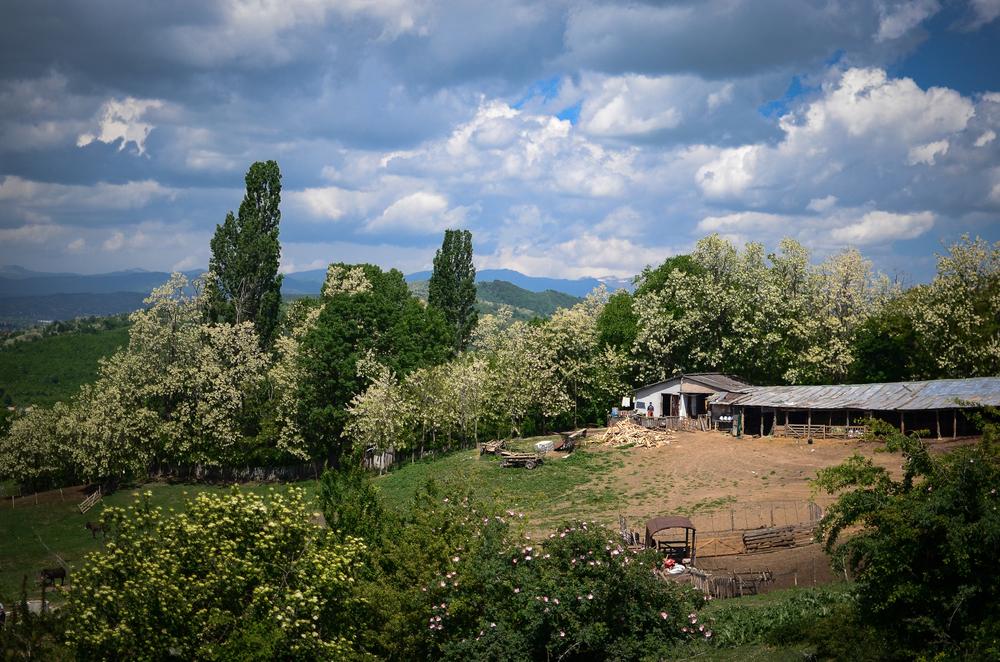 Romania-15.jpg