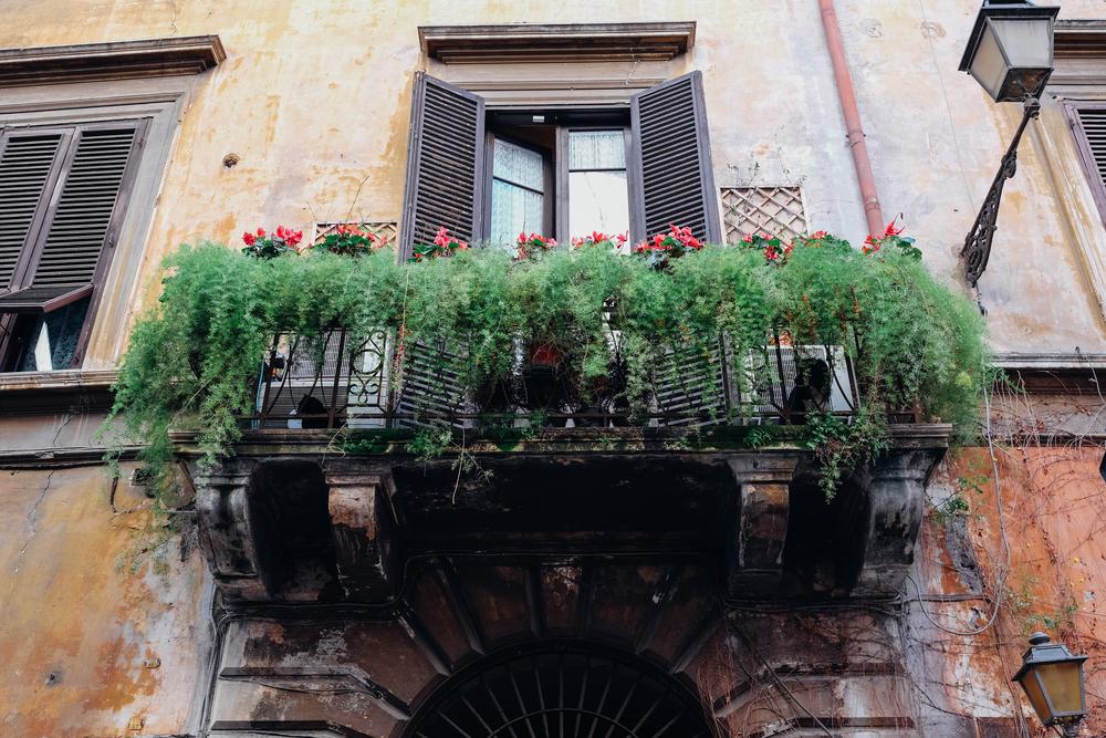 Roma-30.jpg