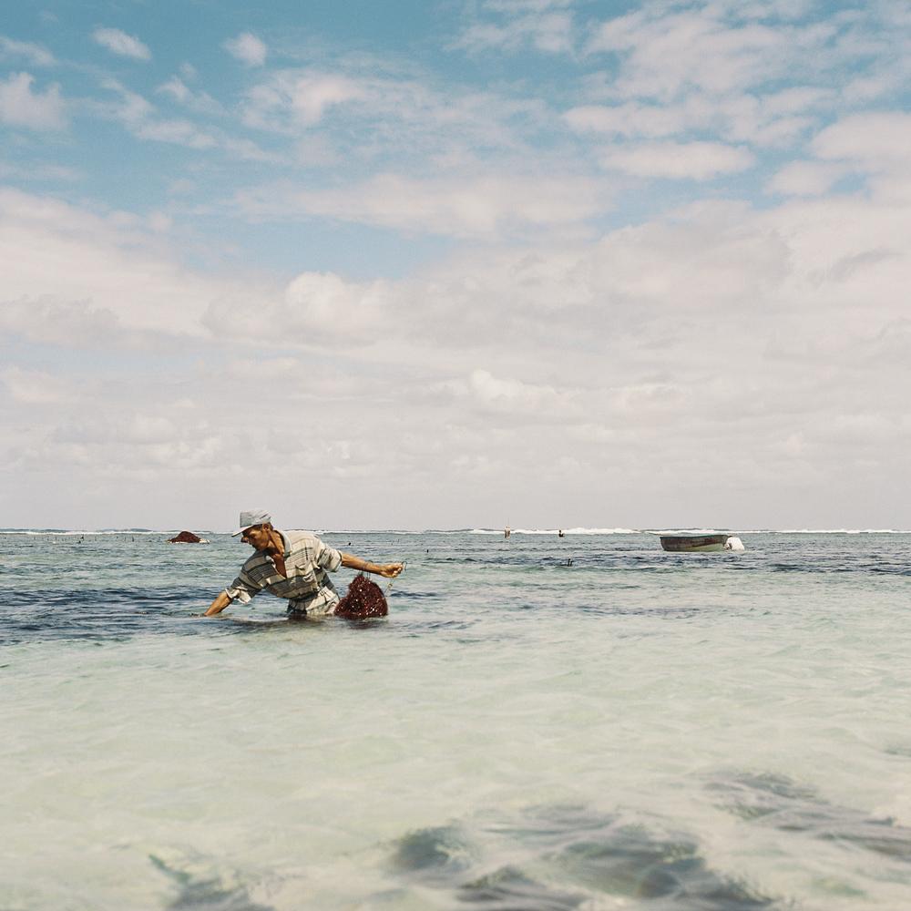 Bali-film-43.jpg