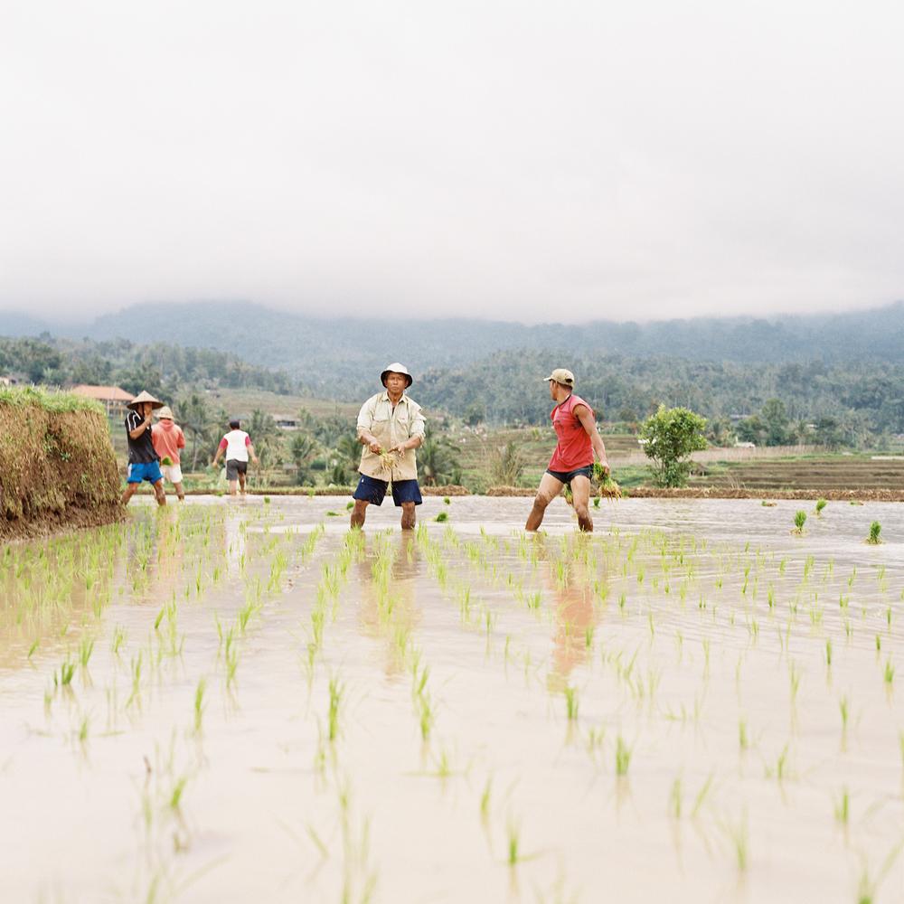 Bali-film-69.jpg