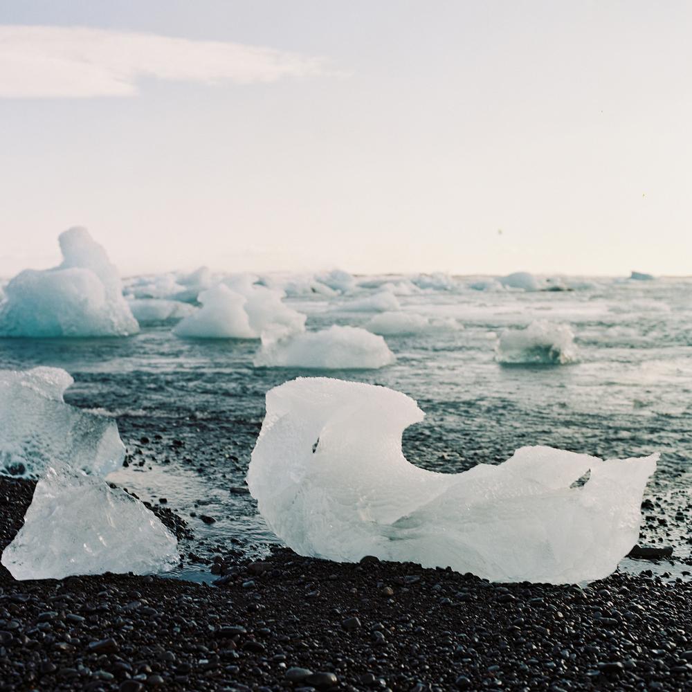 Jökulsárlón Floating Icebergs