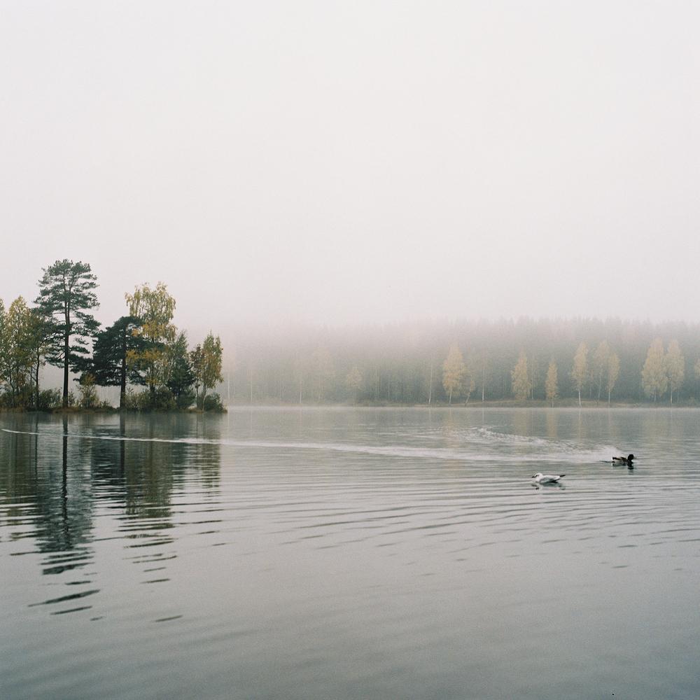 Songsvann-fog-5.jpg