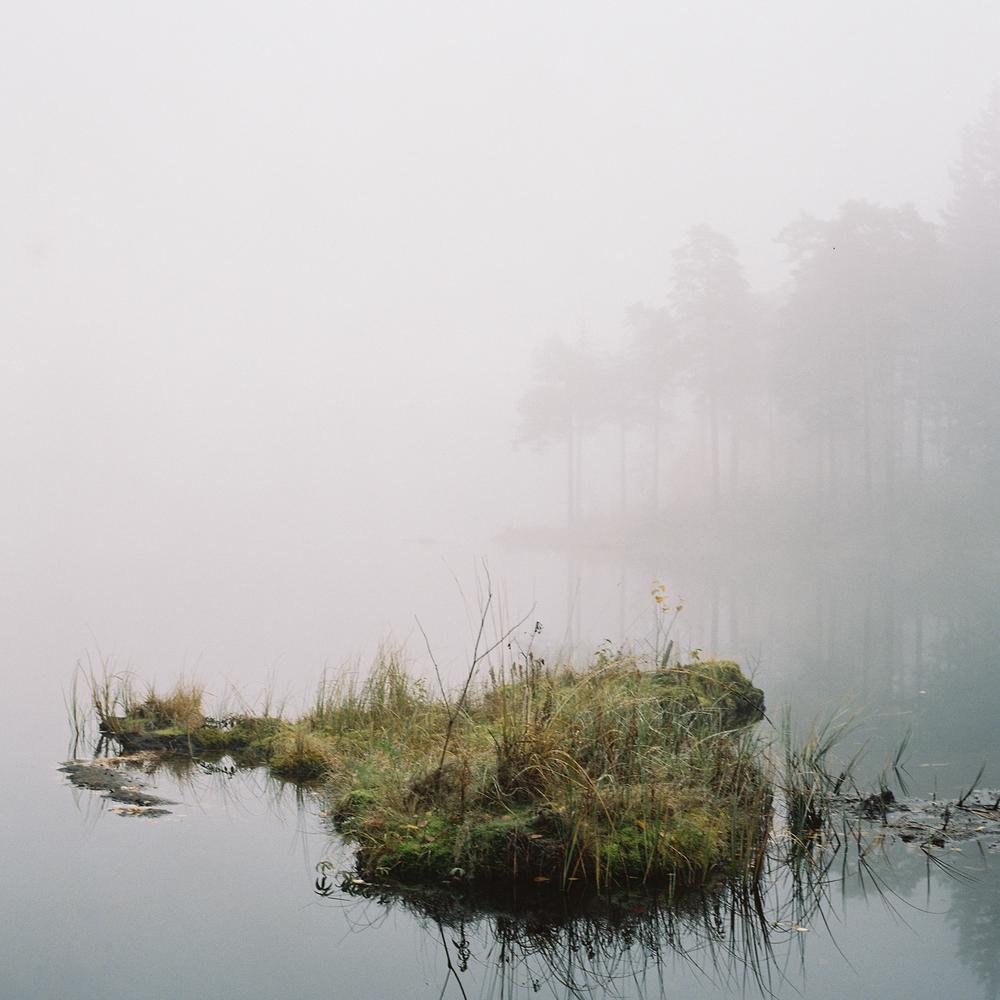 Songsvann-fog-8.jpg