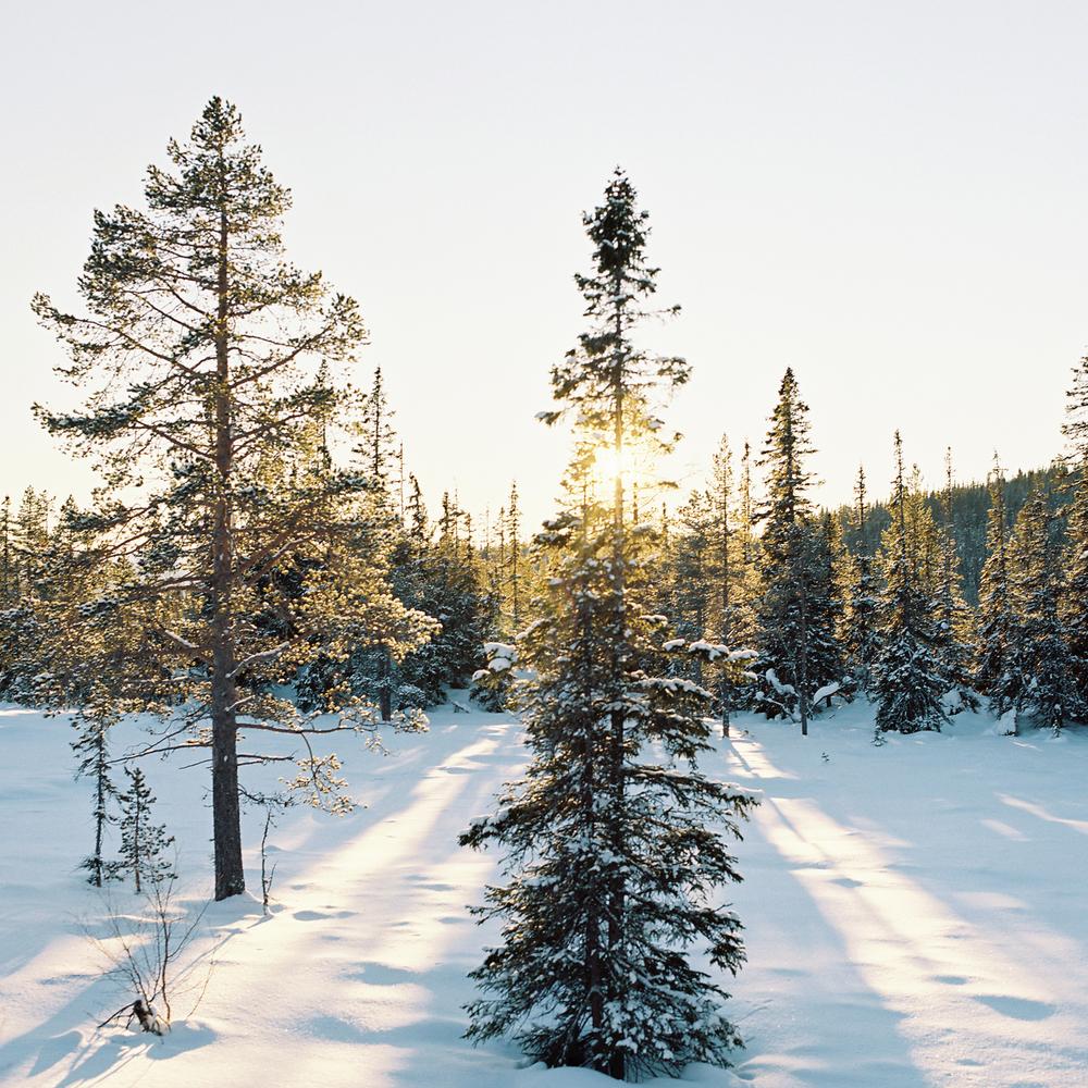 Tuddal-vinter-4.jpg