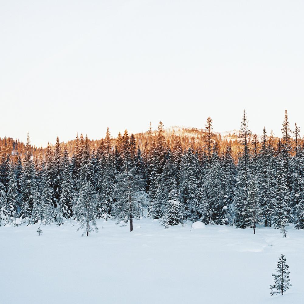 Tuddal-vinter-7.jpg