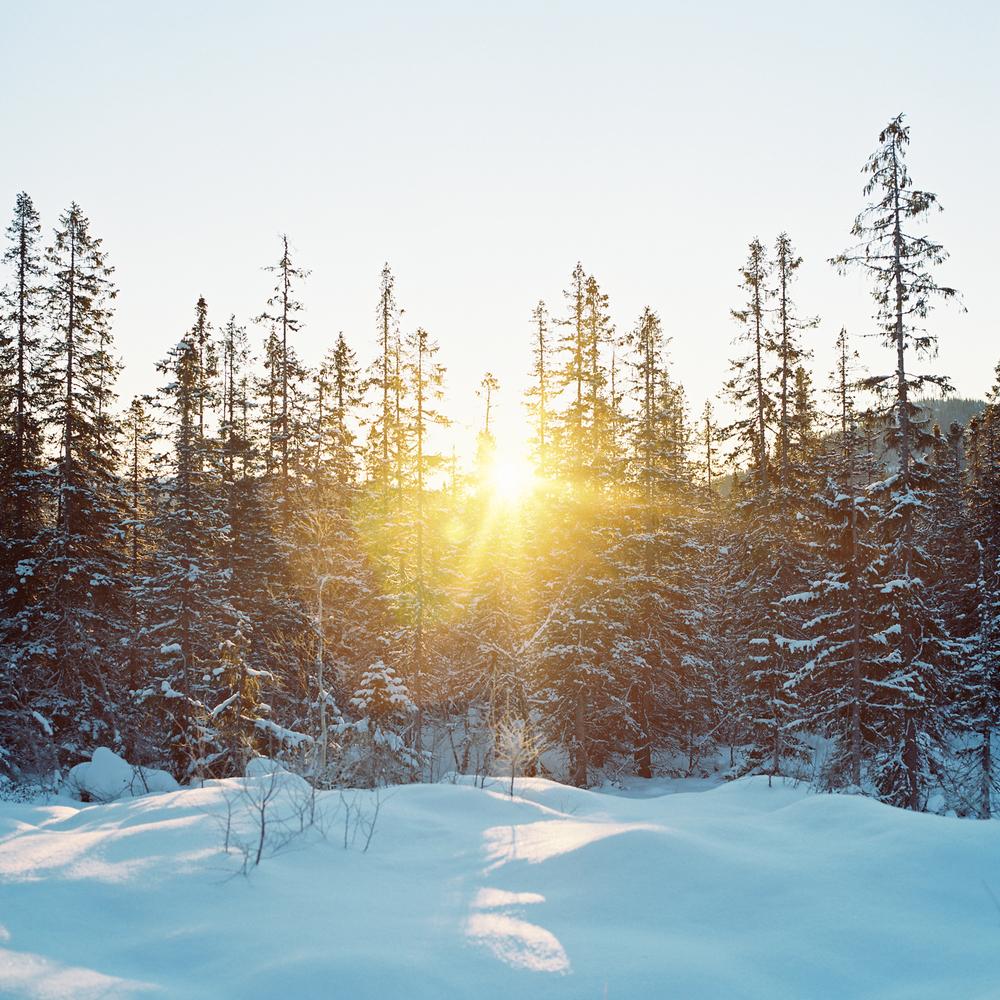 Tuddal-vinter-9.jpg