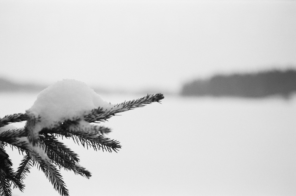 Songsvann-vinter-10.jpg