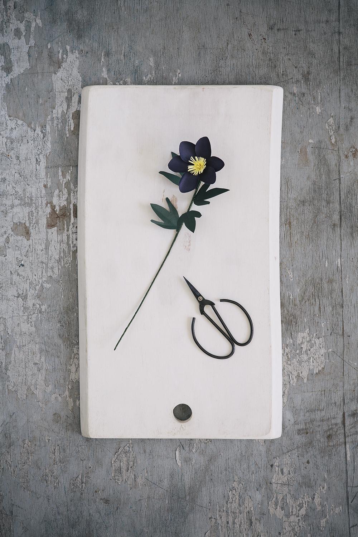 The Paper Florist_A+T_054.jpg