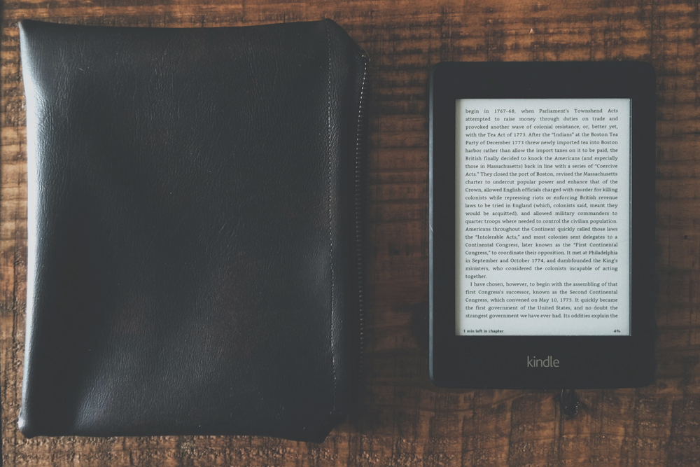 Faux Leather Case Kindle paperwhite by The Rucksack Refinery, What I'm Reading July 4th 2016, A Modern Villain