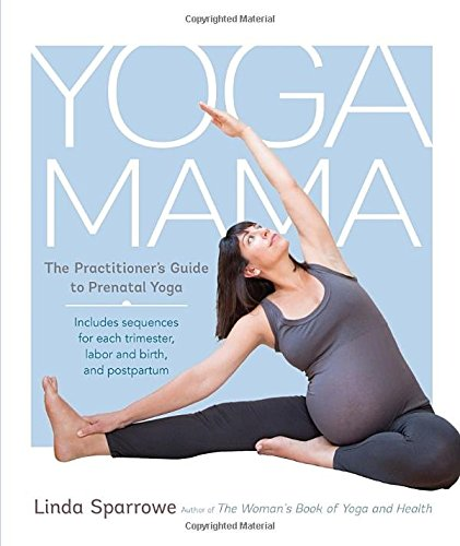 Yoga Mama is the perfect companion for the experienced yoga practitioner during her pregnancy and on into motherhood. This pre- and postnatal book offers practical advice and inspiration, asana sequences, pranayama practices, and meditation techniques, all of which speak to and help new mothers connect more deeply to their experience and prepare for their journey--physically, mentally, and spiritually. Grounded in ancient wisdom and contemporary knowledge, the book covers each trimester, labor and birth, and the postpartum years.