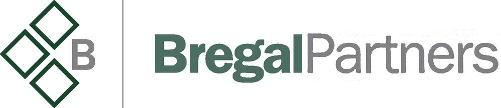bregal_partners-lg copy.jpg