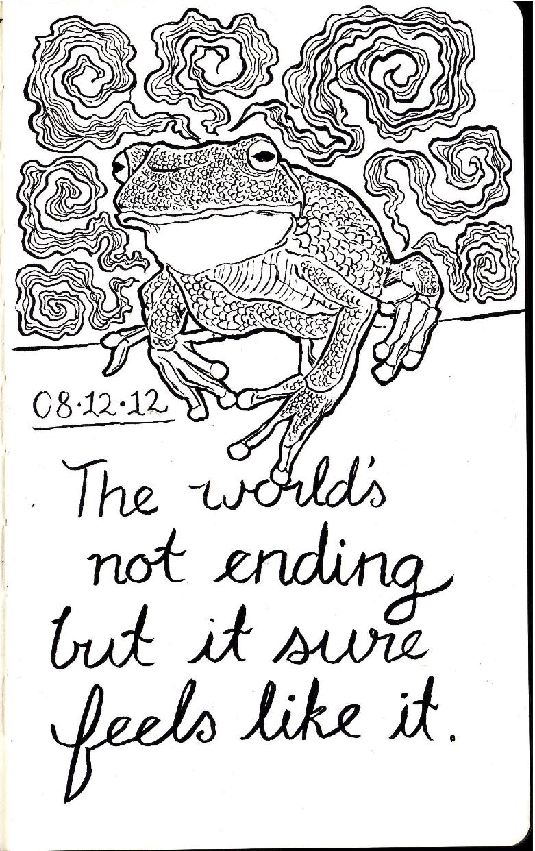 moleskinefrog.jpg