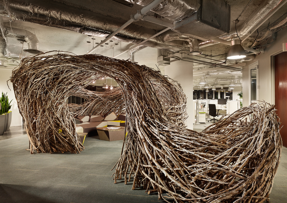 Nest.nosmileyballs.jpg