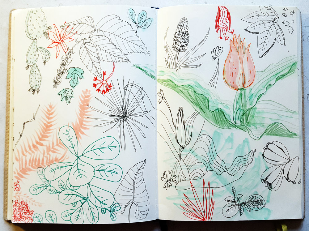 botanic garden sketchbook.jpg