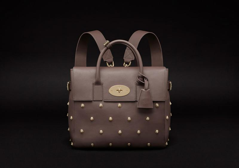 Limited Edition Cara Delevingne Bag in Taupe Silky Classic Calf with Lion Rivets 2.jpg