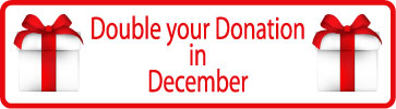 Double-December-Donation-Button.jpg