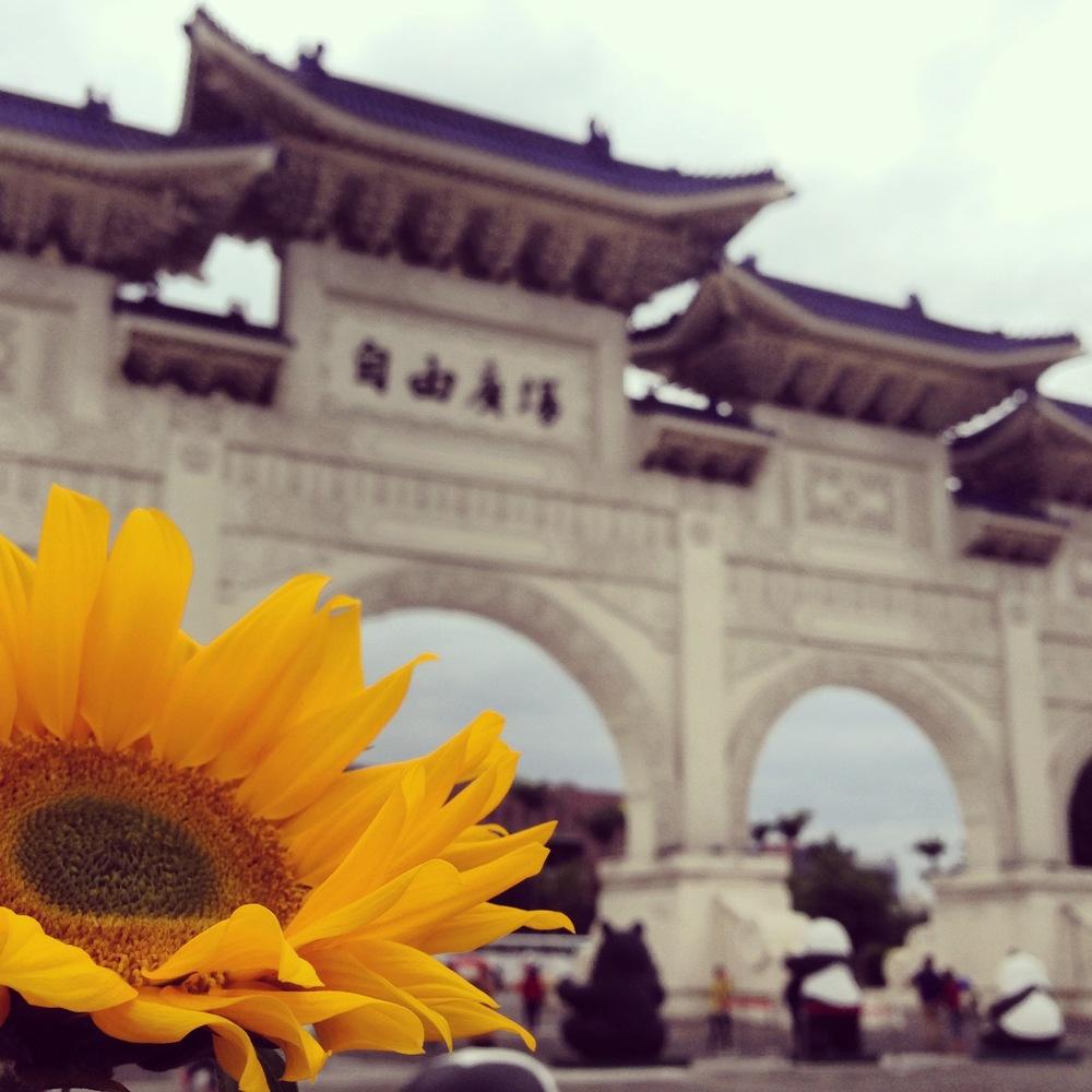 我們的微笑 我們的堅持 我們的民主 台灣加油!