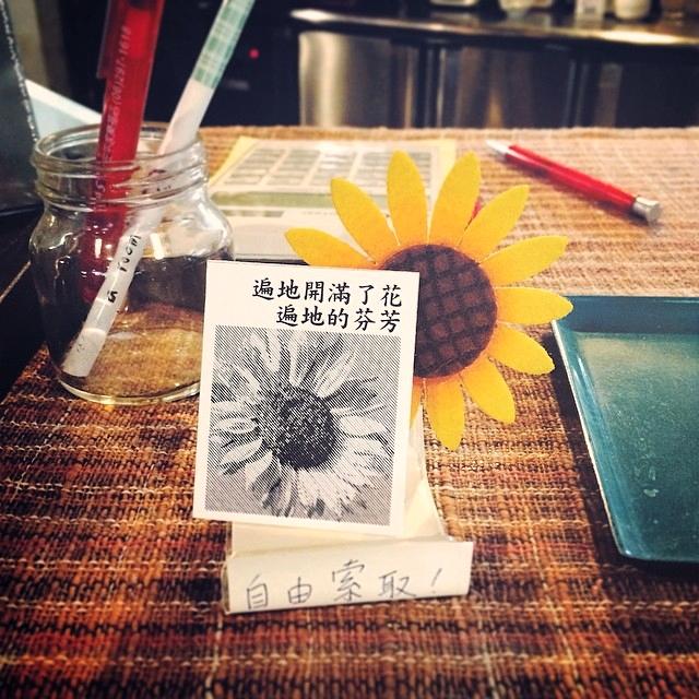 在台南房間咖啡的櫃?拍下的太陽花。