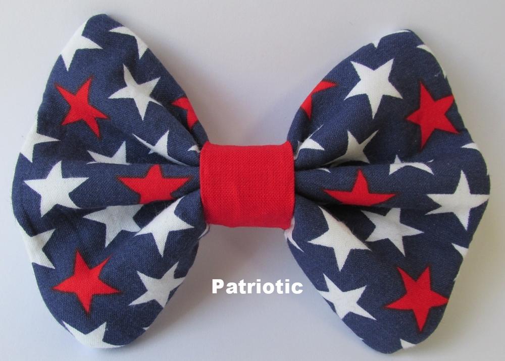 Patriotic 4514 final.jpg