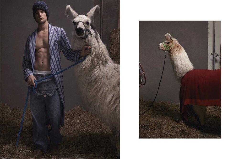 llamas-pajamas-06.jpg