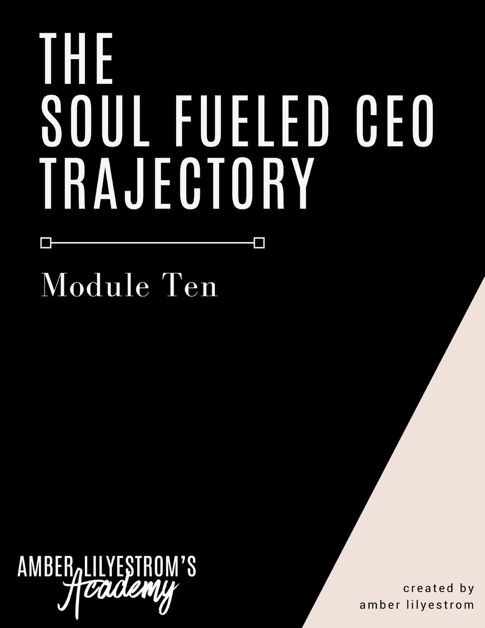 Module 10- The Soul Fueled CEO™ Trajectory.jpg