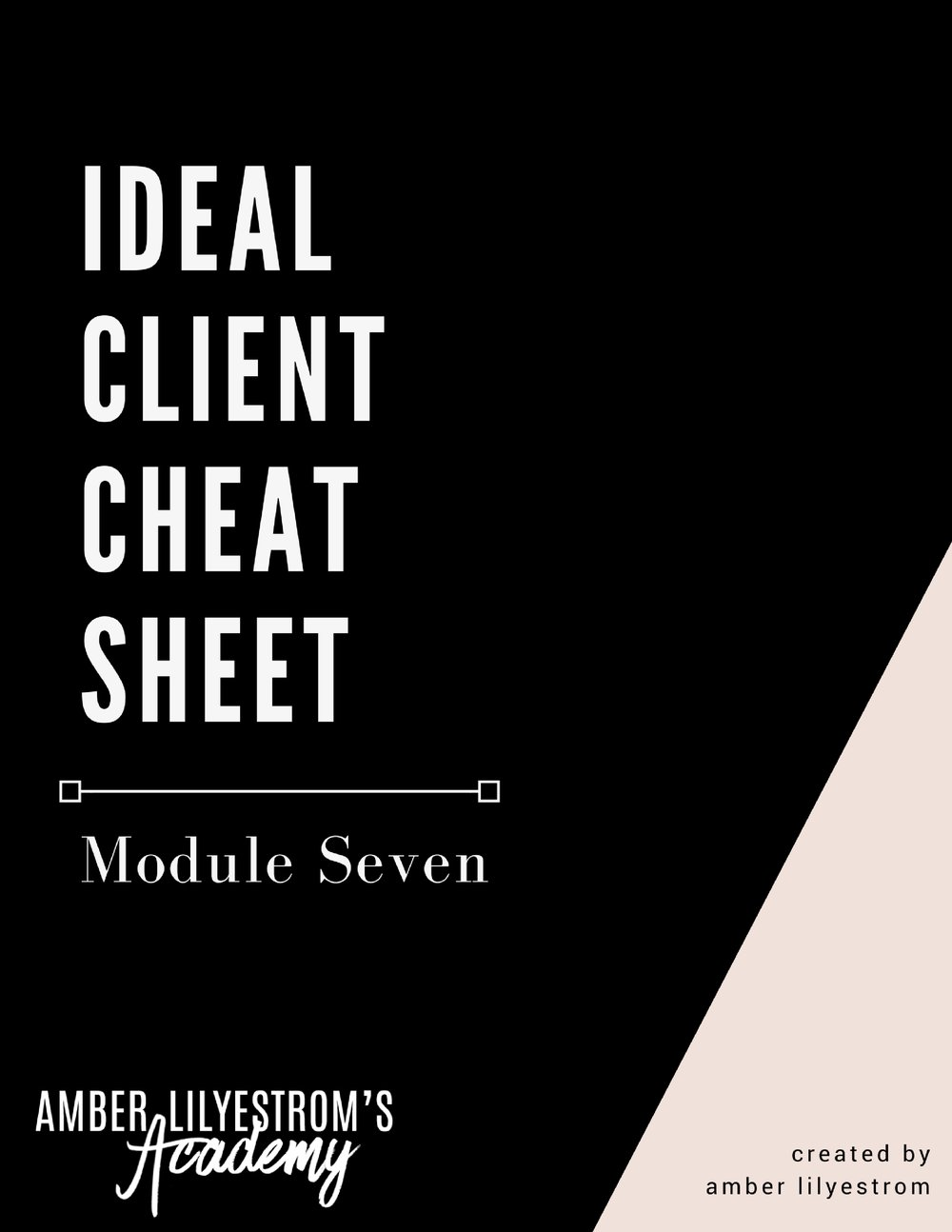 Module Seven - Ideal Client Download.jpg
